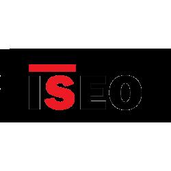 ISEO (1)